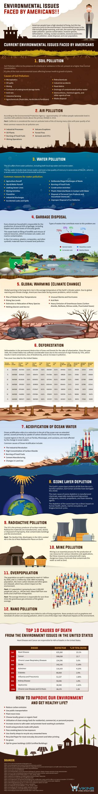 environmental issues faced by americans infographic