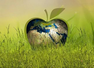 manufacturing and sustainability