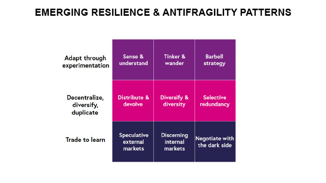Emerging resilience and antifragility patterns.