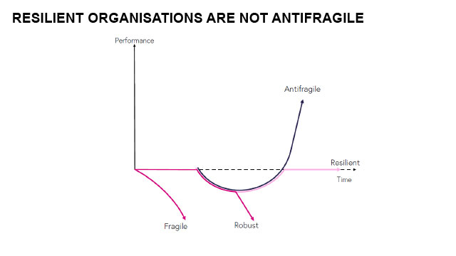 Resilient organizations are not antifragile.