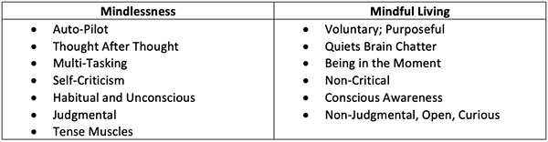 Figure 1. The differences between mindless and mindful living