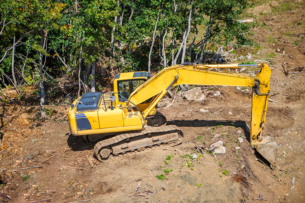 clearing out plot of land clearing