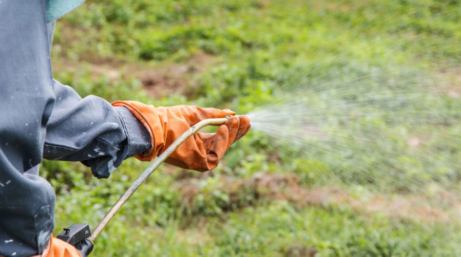"""The EPA classifieds paraquat as a """"restricted use"""" chemical. This means it can only be applied by licensed workers."""